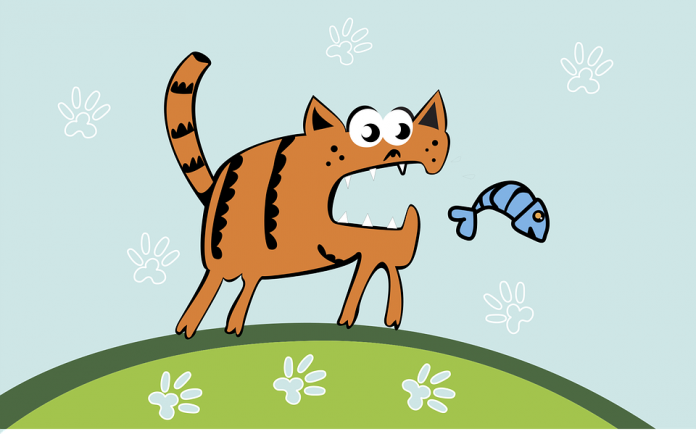 Can cats be allergic to fish the answer may surprise you for Can you be allergic to fish